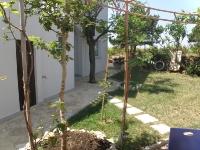apt-5-travnjak