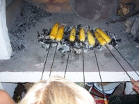 peceni-mlijecni-kukuruz