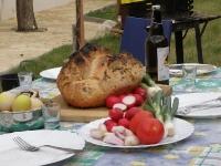 sunka-u-kruhu-iz-krusne-peci